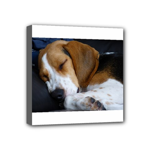 Beagle Sleeping Mini Canvas 4  x 4