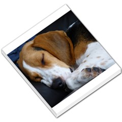 Beagle Sleeping Small Memo Pads
