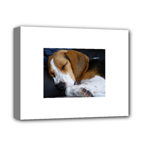 Beagle Sleeping Deluxe Canvas 14  x 11