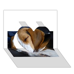 Beagle Sleeping Heart 3D Greeting Card (7x5)