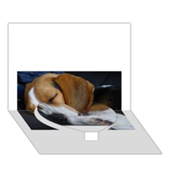 Beagle Sleeping Heart Bottom 3D Greeting Card (7x5)