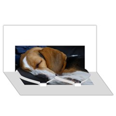 Beagle Sleeping Twin Heart Bottom 3D Greeting Card (8x4)