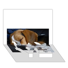 Beagle Sleeping LOVE Bottom 3D Greeting Card (7x5)
