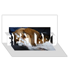 Beagle Sleeping BEST BRO 3D Greeting Card (8x4)