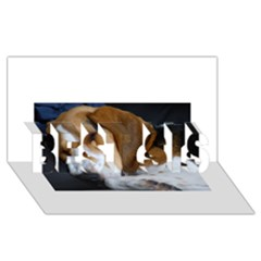 Beagle Sleeping BEST SIS 3D Greeting Card (8x4)