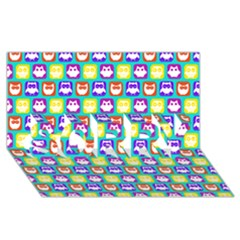 Colorful Whimsical Owl Pattern Sorry 3d Greeting Card (8x4)