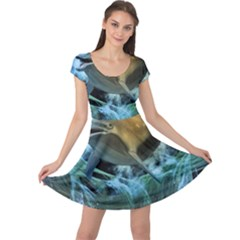 Funny Dolphin In The Universe Cap Sleeve Dresses
