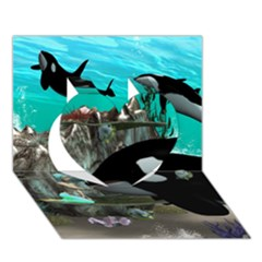 Cute Mermaid Playing With Orca Heart 3d Greeting Card (7x5)