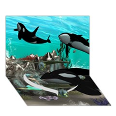 Cute Mermaid Playing With Orca Heart Bottom 3d Greeting Card (7x5)