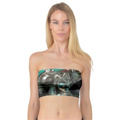 Cute Mermaid Playing With Orca Women s Bandeau Tops