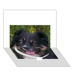 Australian Shepherd Black Tri Heart Bottom 3D Greeting Card (7x5)