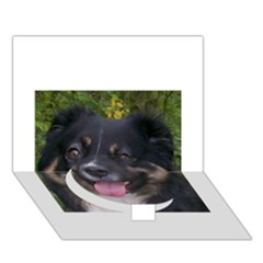 Australian Shepherd Black Tri Circle Bottom 3D Greeting Card (7x5)