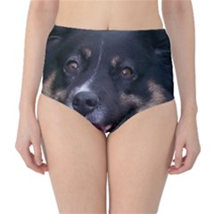 Australian Shepherd Black Tri High-Waist Bikini Bottoms