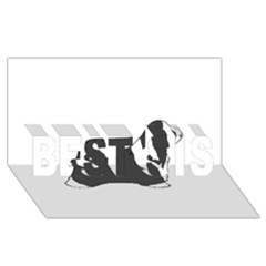 Bearded Collie color silhouette BEST SIS 3D Greeting Card (8x4)