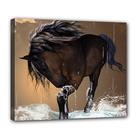 Beautiful Horse With Water Splash Deluxe Canvas 24  x 20
