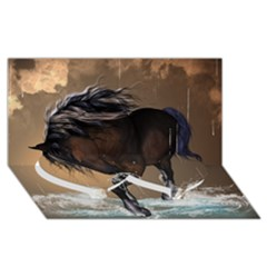 Beautiful Horse With Water Splash Twin Heart Bottom 3d Greeting Card (8x4)