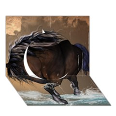 Beautiful Horse With Water Splash Circle 3D Greeting Card (7x5)