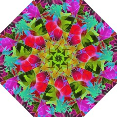 Floral Abstract 1 Folding Umbrellas