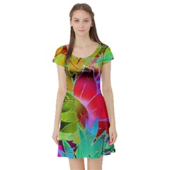 Floral Abstract 1 Short Sleeve Skater Dresses