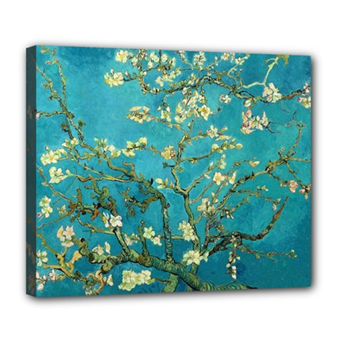 Blossoming Almond Tree Deluxe Canvas 24  X 20