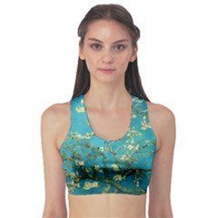 Blossoming Almond Tree Sports Bra