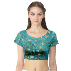 Blossoming Almond Tree Short Sleeve Crop Top