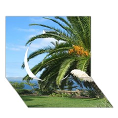 Sunny Tenerife Circle 3d Greeting Card (7x5)