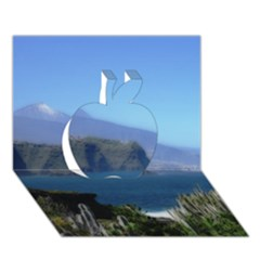 Panted Landscape Tenerife Apple 3d Greeting Card (7x5)