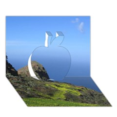 Tenerife 09 Apple 3D Greeting Card (7x5)