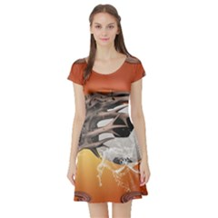 Soccer With Skull And Fire And Water Splash Short Sleeve Skater Dresses
