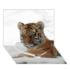 Tiger 2015 0101 Heart Bottom 3D Greeting Card (7x5)