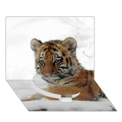 Tiger 2015 0101 Circle Bottom 3d Greeting Card (7x5)