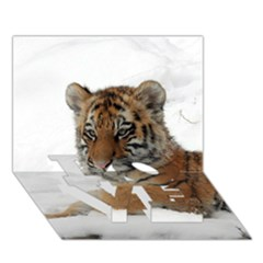 Tiger 2015 0101 LOVE Bottom 3D Greeting Card (7x5)