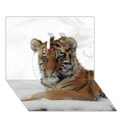 Tiger 2015 0101 Apple 3D Greeting Card (7x5)