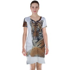 Tiger 2015 0101 Short Sleeve Nightdresses
