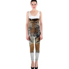 Tiger 2015 0101 OnePiece Catsuits