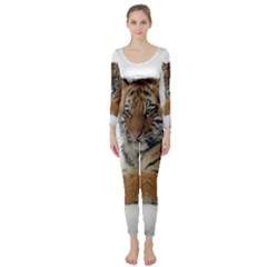 Tiger 2015 0101 Long Sleeve Catsuit