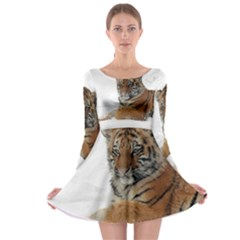 Tiger 2015 0101 Long Sleeve Skater Dress