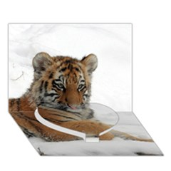 Tiger 2015 0102 Heart Bottom 3d Greeting Card (7x5)