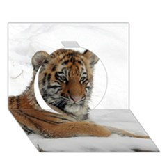 Tiger 2015 0102 Circle 3D Greeting Card (7x5)