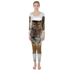 Tiger 2015 0102 Long Sleeve Catsuit