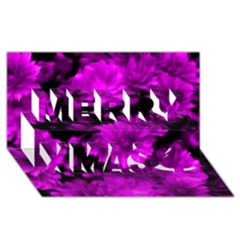 Phenomenal Blossoms Hot  Pink Merry Xmas 3d Greeting Card (8x4)