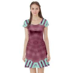 Arnfrid Belinda Short Sleeve Skater Dresses