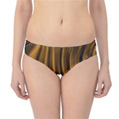 Shiny Silk Golden Hipster Bikini Bottoms