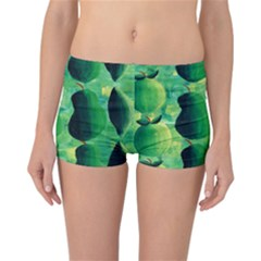 Apples Pears And Limes  Reversible Boyleg Bikini Bottoms