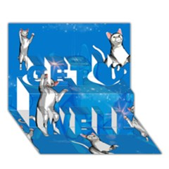Funny, Cute Playing Cats With Stras Get Well 3D Greeting Card (7x5)