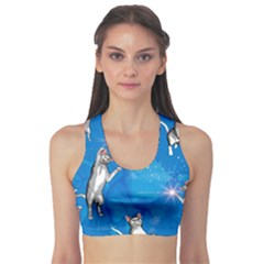 Funny, Cute Playing Cats With Stras Sports Bra