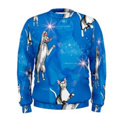 Funny, Cute Playing Cats With Stras Men s Sweatshirts