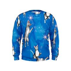 Funny, Cute Playing Cats With Stras Boys  Sweatshirts