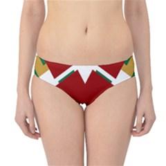 Christiane Yvette Hipster Bikini Bottoms